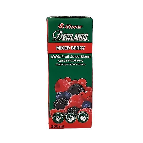 Dewlands 200ml Tetra Pack - Mixed Berry