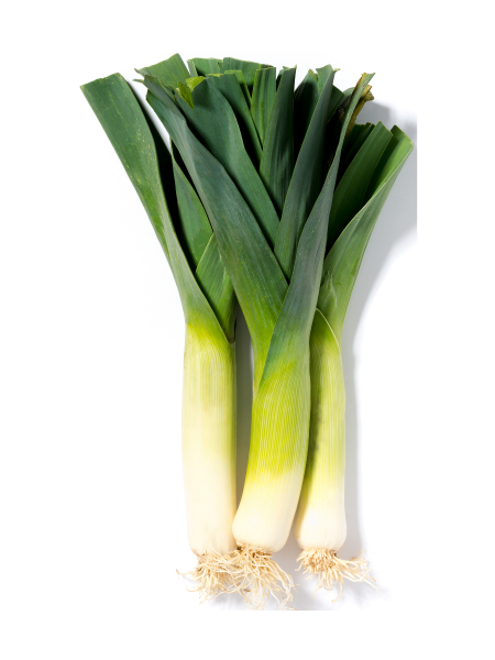 Leeks - bunch