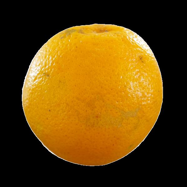 Oranges - Pocket 5kg