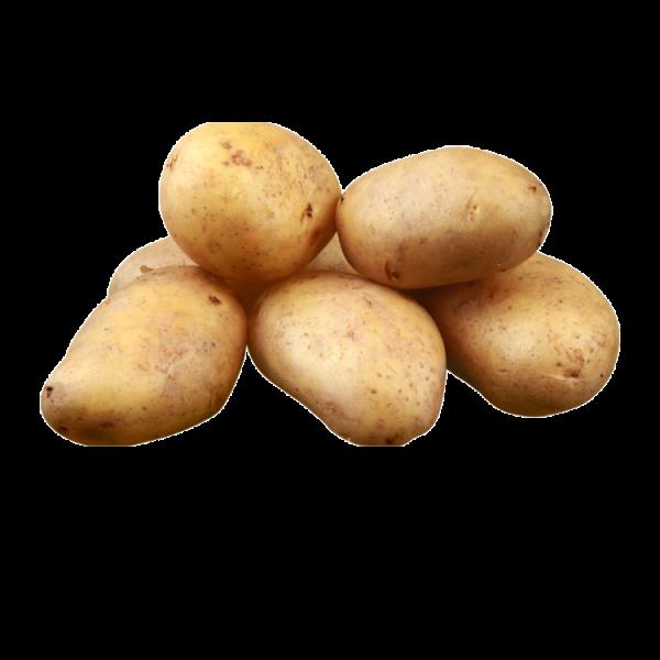 Potatoes - 10kg Pocket - washed